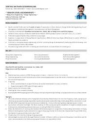 Piping Designer Resume Sample Magnificent Piping Designer Resume Sample Megakravmaga