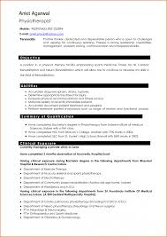 Resume Type Professional Resume Font For How To Up Resumes Job 55