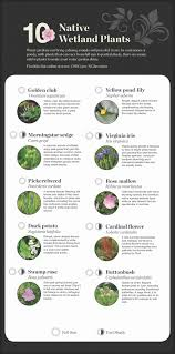 Small Blue Printer Garden National Garden Native Plant Recommendations United States