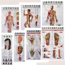 Us 9 98 3 7pcs Body Acupuncture Points Chart Human Meridian Gut Map Human Skeletal Figure Body Digest Map Head Eyes Ears Foot Massage In Massage