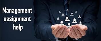 management assignment help services online writing services management assignment help