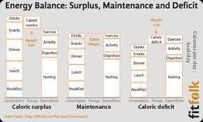 Exercise Expenditure Chart Whats The Best Exercise For Weight Loss Fitfolk