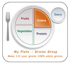 grains food group clipart. Perfect Food My Plate Healthy Foods From Grains Group In Grains Food Group Clipart K