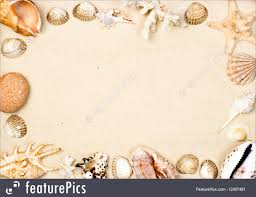starfish and s seas and starfish on sand background frame