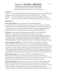 Java Resume Example Developer Sample Samples Prof Sevte