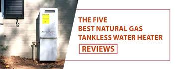 takagi tankless water heater. Takagi Tankless Water Heater Best Natural Gas Hot Reviews .