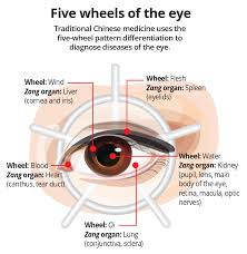 In Traditional Chinese Medicine Diabetic Retinopathy Is