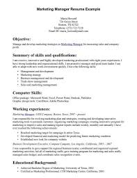 Resume Summary Examples For Team Leader Therpgmovie