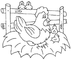 Free Printable Chicken Coloring Pages Animal Chicken Colouring