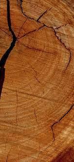 vu06-wood-texture-pattern-brown