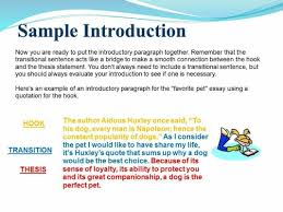 Example Of Introduction Paragraph To An Essay Pin By Cindy Campbell On Grammar English Language