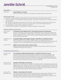 Free Collection 42 Web Developer Resume Template Picture Free