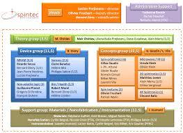 Organization Chart Spintec