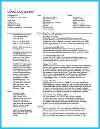 Creative Director Resume Nardellidesign Com Museum Examples Example
