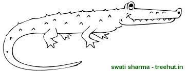 Small Picture Crocodile Coloring Page