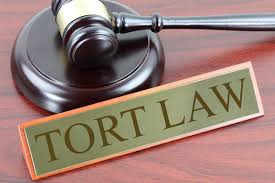 Difference Between Contract And Tort Difference Between