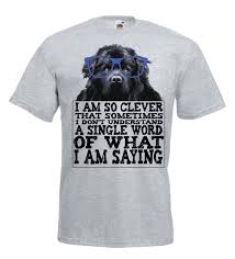 Funny Tshirt Quotes