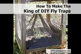 enjoying the outside of your home can be a lot more enjoyable without a lot of pests flying around there are quick and natural ways to use homemade fly