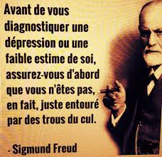 Citation Du Jour Humour Webwinkelbundel