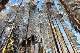 invisible tree house hotel. Mårten \u0026 Gustav Cyrén Designed The Cabin, A Sleeping Capsule With Rounded Corners, Huge Windows, And Dramatic Views Of Lule River. Invisible Tree House Hotel