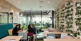 Interior Design Courses Auckland Greenair Vitality Through Plant Scapes And Living Walls Nz