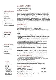 Examples Of Marketing Resumes Digital Marketing Resume Internet Example Sample Web Campaign