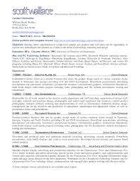 doc career advice to improve your resume the summary professional summary resume