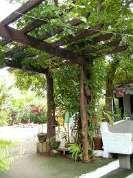 Small Picture Tropical Garden Design Romblon Philippines Romblon Phil Flickr