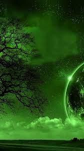 🥇 Trees moon monochrome wallpaper ...