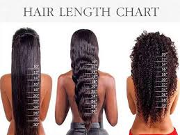 Hair Type Chart Men Hair Length Chart What You Dont Know May Shock You Lewigs