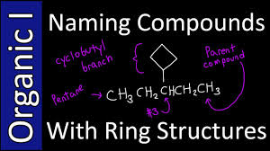 o ring chemistry. naming compounds with ring branches (iupac style) - organic chemistry i youtube o