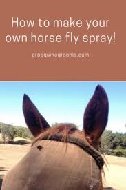 make your own horse fly spray