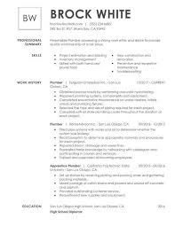 Basic Skills For A Resume Get The Job With A Simple Resume Guide My Perfect Resume