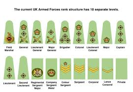 Army Ranking System Chart Do We Need To Simplify The Rank Structures Of Uk Armed