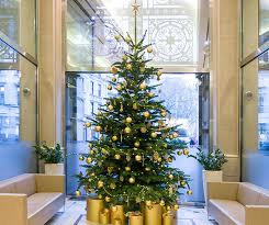 Office Christmas Trees Corporate Commercial Christmas