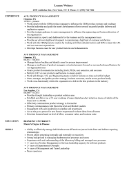 Product Management Resume AVP Product Management Resume Samples Velvet Jobs 11
