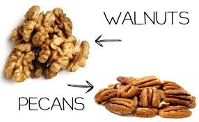 pecan nut. Unique Pecan Pecans Or Walnuts Intended Pecan Nut