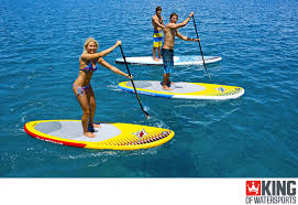 what is stand up paddle boarding sup