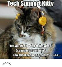 tech support kitty did you try chewingon the wires? or dangling from Work Meme at Wire Harness Tech Meme