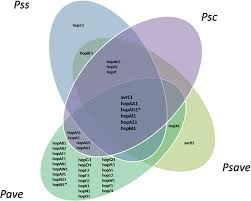 Venn Diagram Complement Venn Diagram Of The Type Iii Secretion System Effector Genes