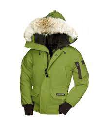 Canada Goose Youth Chilliwack Bomber GreenTea,canada goose coat for  sale,popular stores
