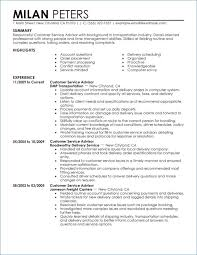 Summary For Resume Customer Service Kantosanpo Com