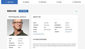40 Best HTML Resume Templates For Awesome Personal Websites 2040 Stunning Best Resume Websites