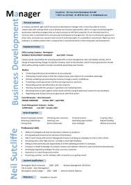 Business Development Manager CV 8 ...