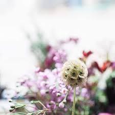 Flowers With Friends: Luxury Surrey Florist Kate Avery Flowers   Charlotte  Argyrou