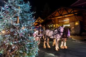 Image result for big bear village christmas lights