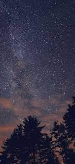 night-sky-stars-milkyway-wood-nature-blue