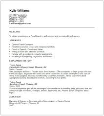 ... sample resume format for travel and tourism ...
