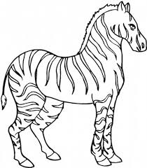 Small Picture Zebra Coloring Pages Miakenasnet