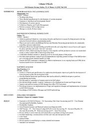 Sap Fico Resume Samples Velvet Jobs